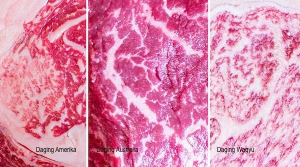 Perbandingan daging amerika, australia, dan wagyu